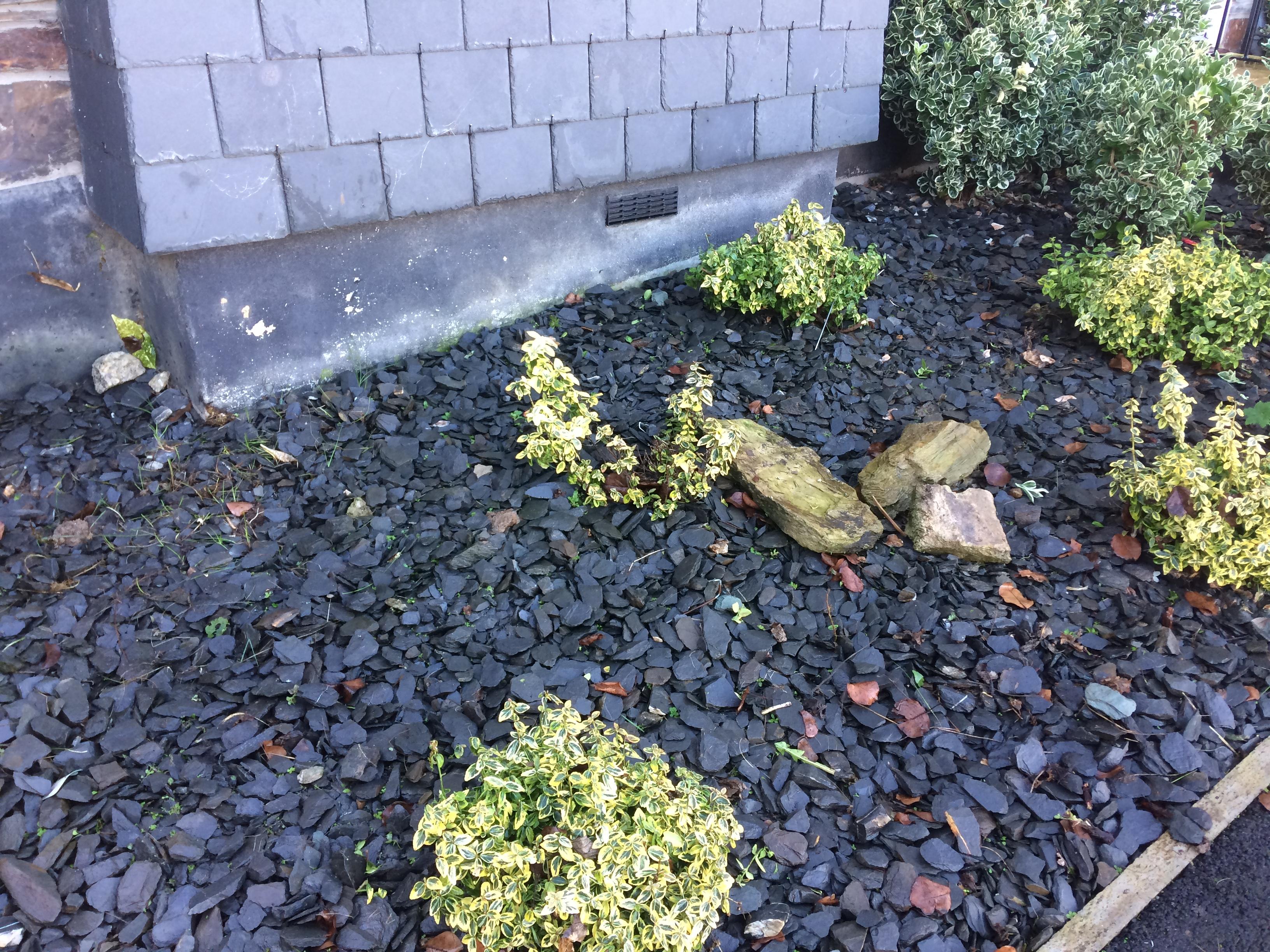 shrubsandslate2